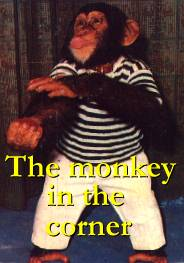 The monkey in the corner